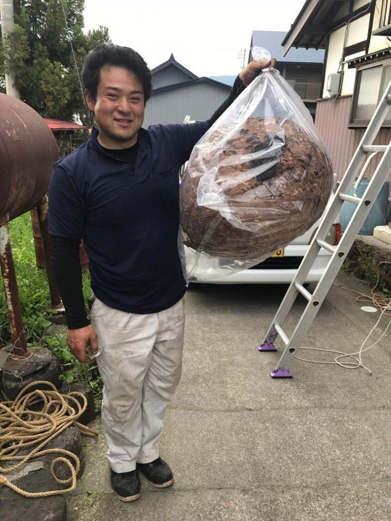 木島平 50cmのハチの巣駆除1