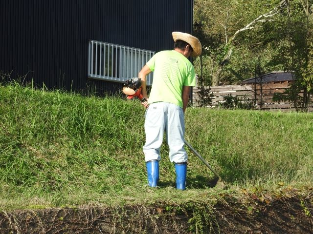 草刈り中の男性
