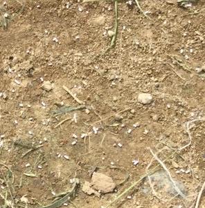 粒状の除草剤