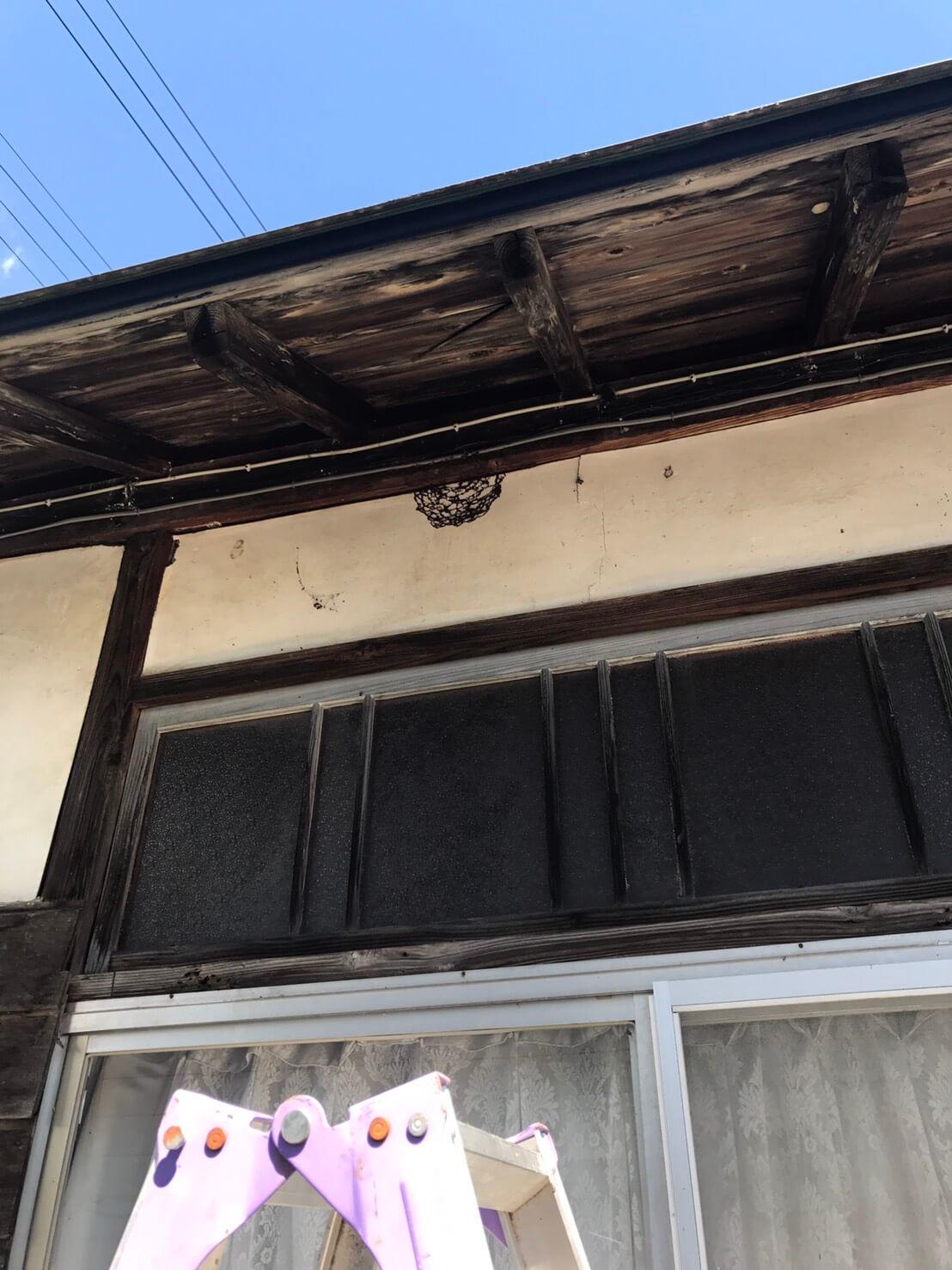 飯山市旭 ハチの巣の駆除2
