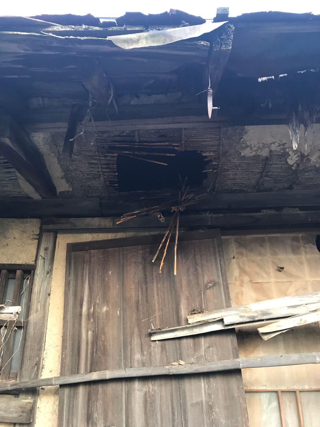 中野市若宮 ハチの巣駆除1