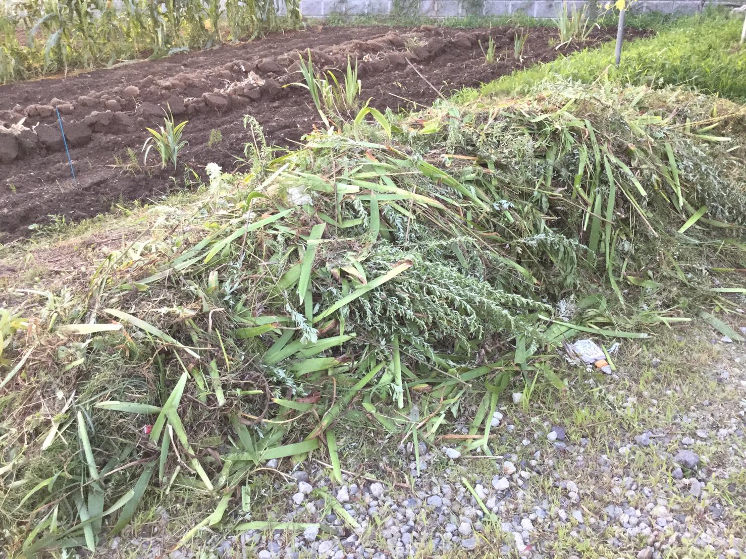 中野市新保 駐車場の草刈り1