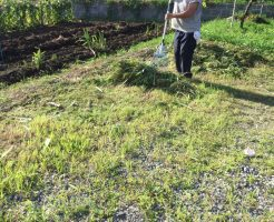 中野市新保 駐車場の草刈り2