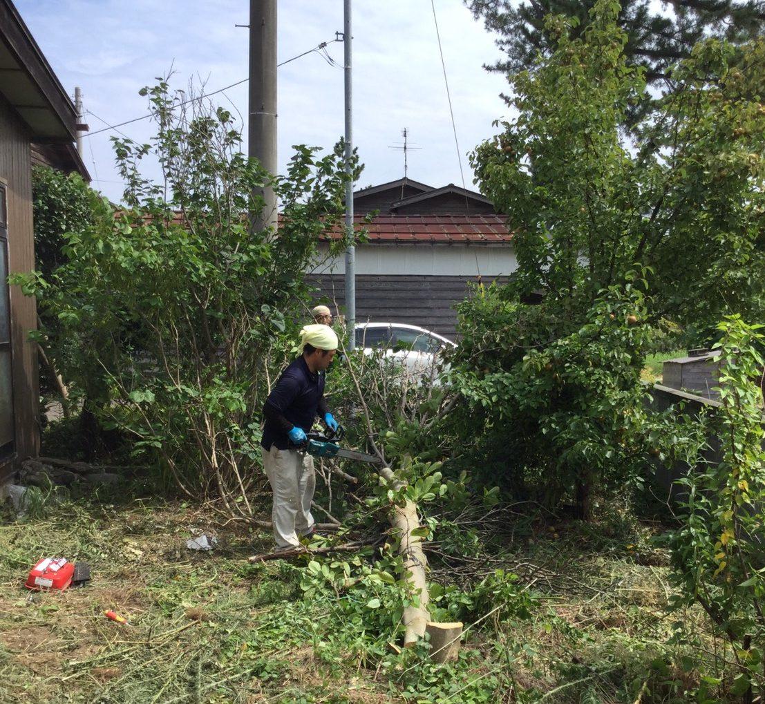 新潟県上越市犀潟 草刈りと木の伐採作業1