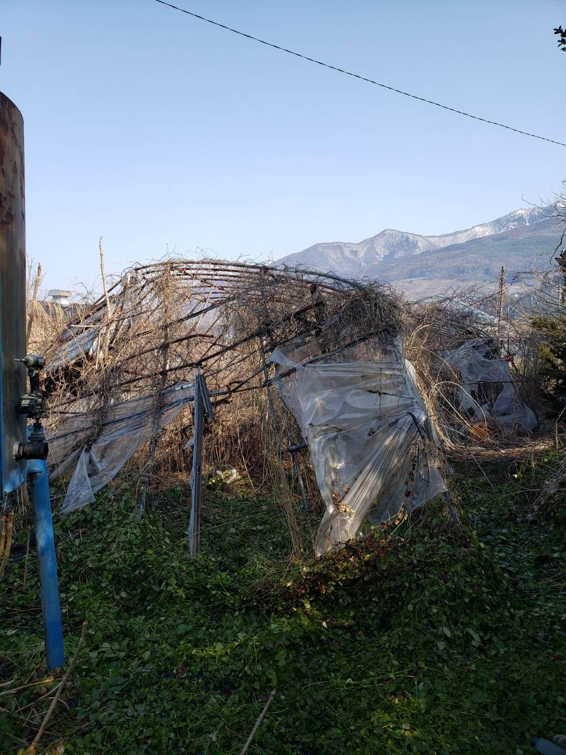 長野市:ビニールハウス等の解体撤去2
