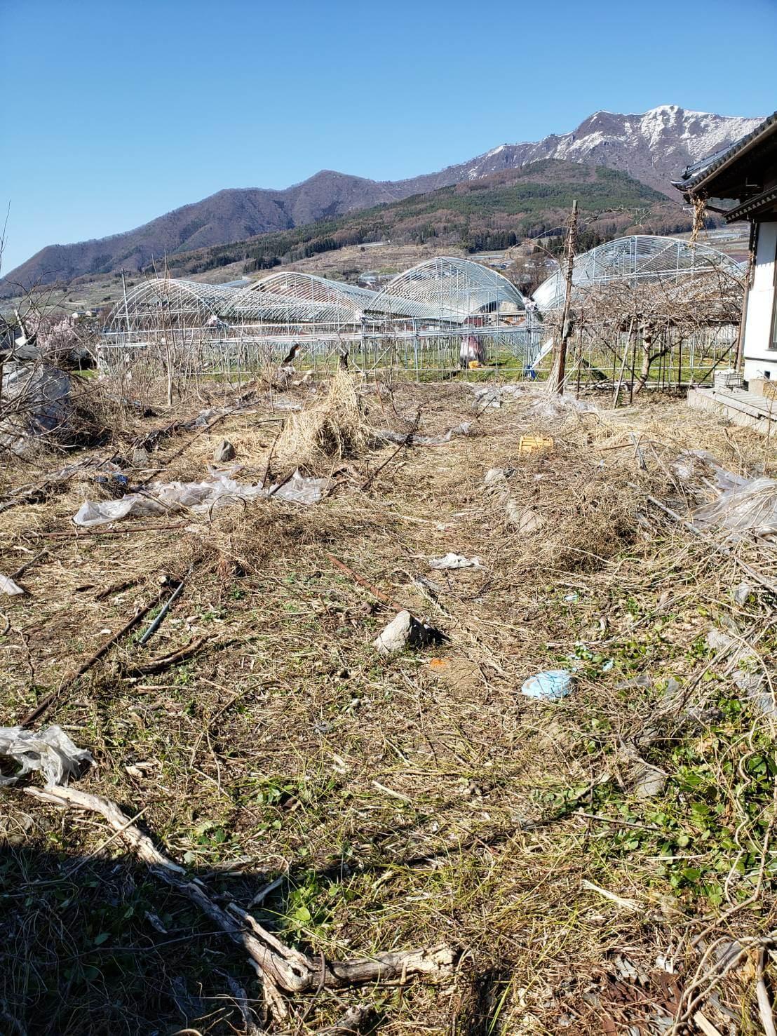 長野市:ビニールハウス等の解体撤去5
