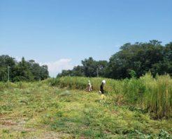 南信地域3000坪の草刈り3