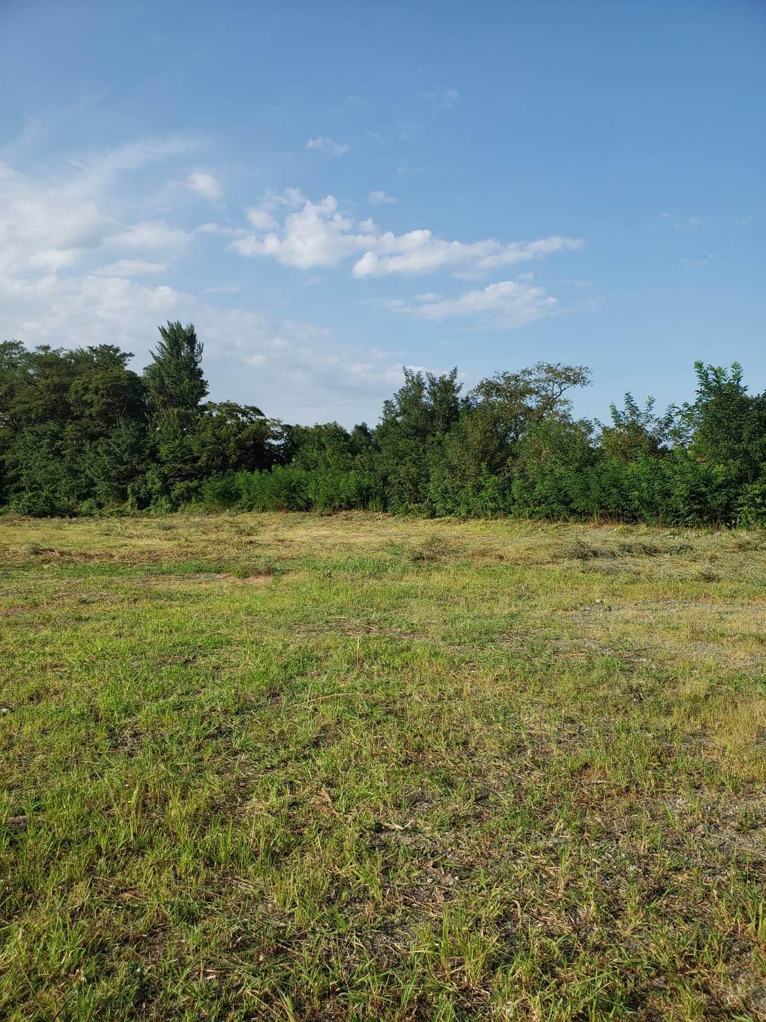 南信地域3000坪の草刈り4