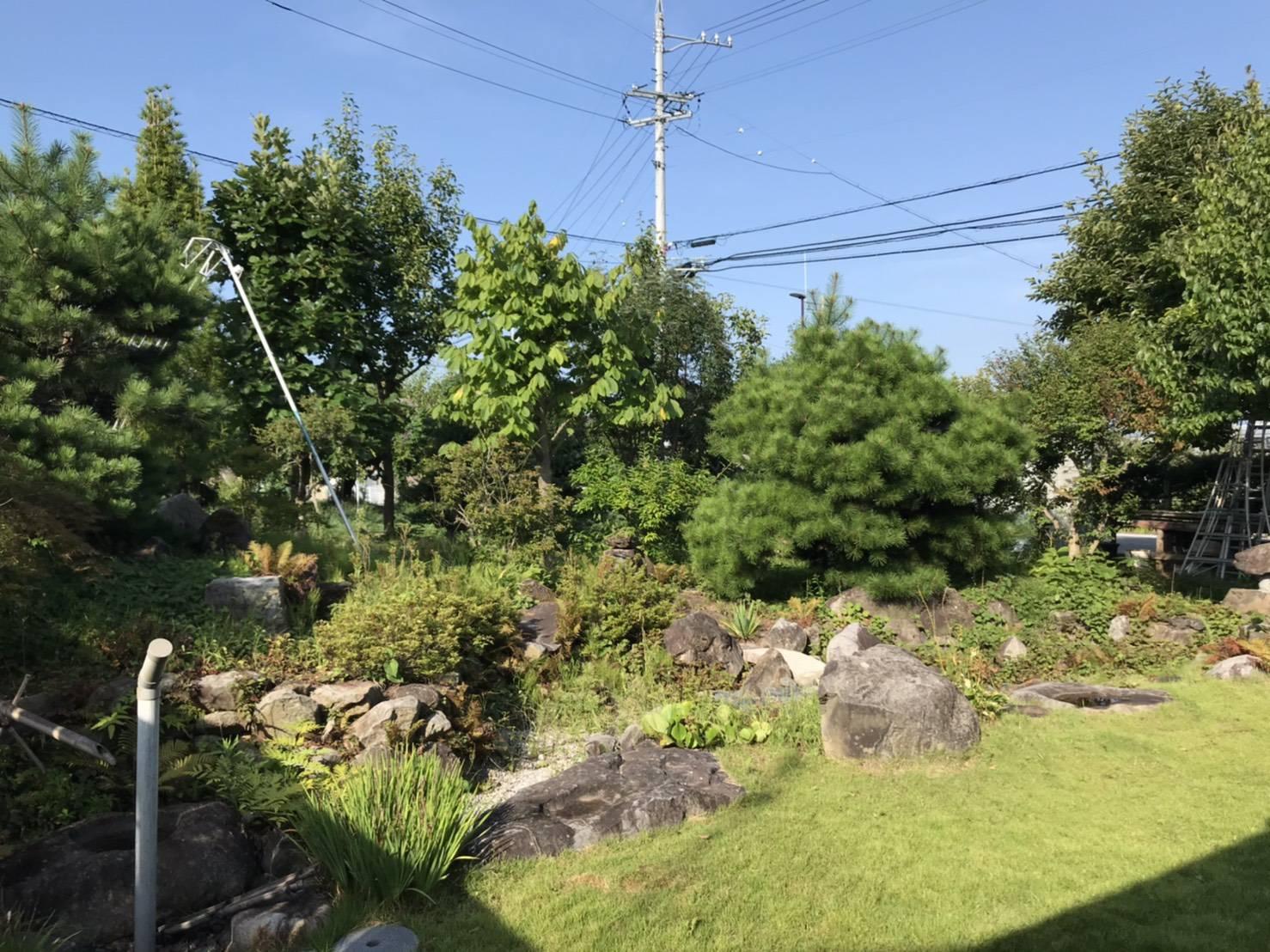 2020年8月30日:北信地域での草刈り・庭木の剪定1