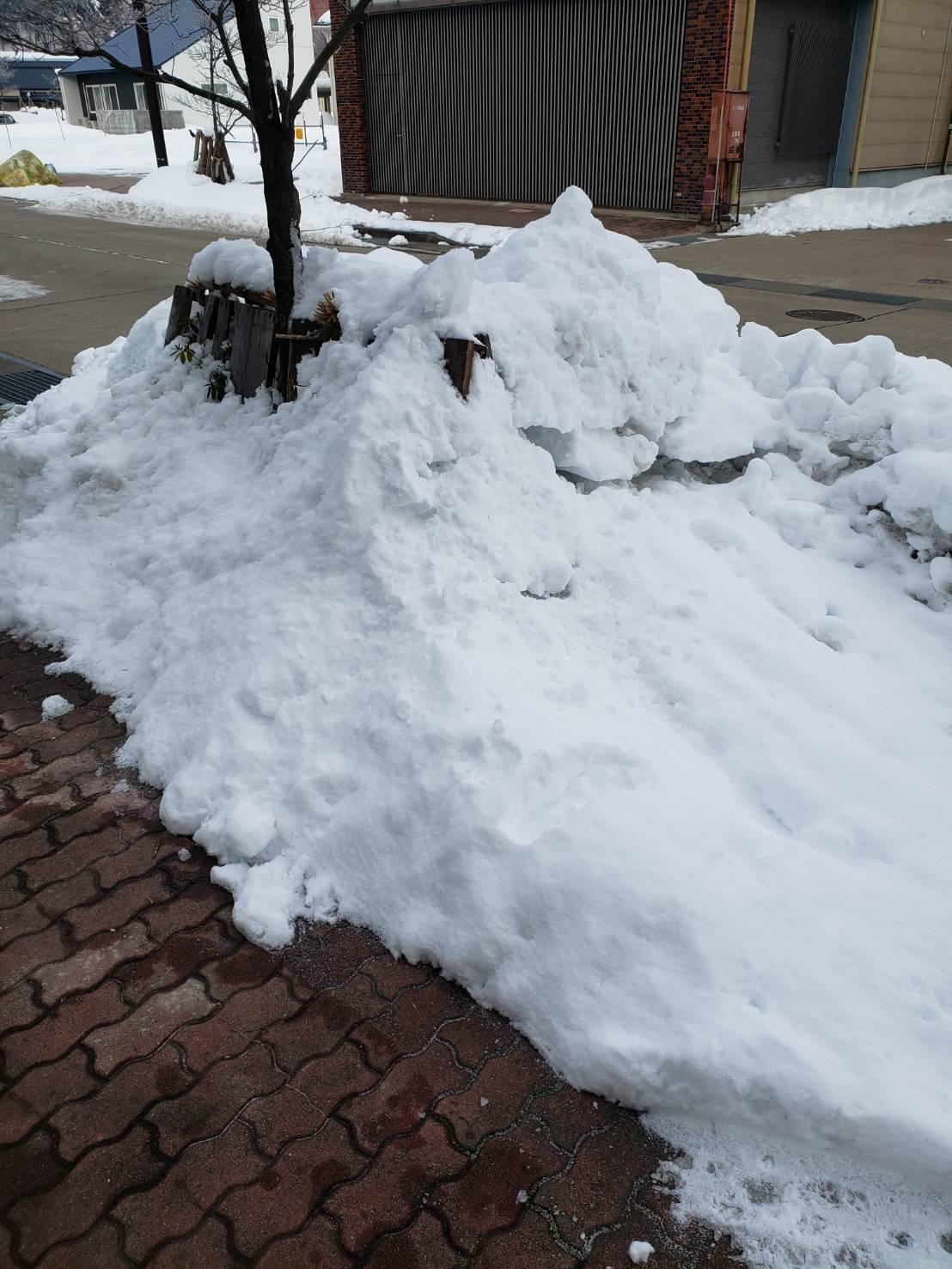 2021年1月8日飯山市除雪1