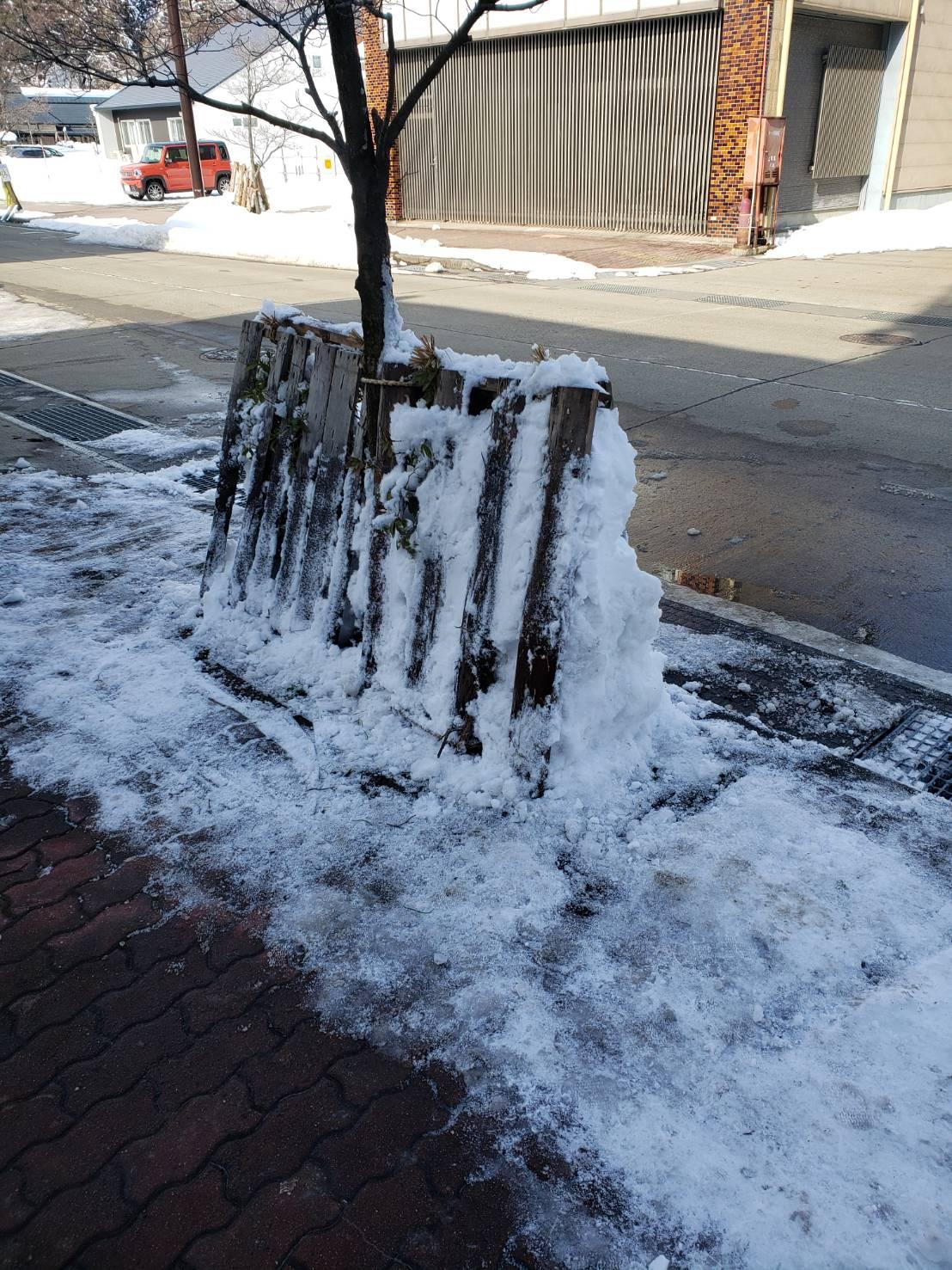 2021年1月8日飯山市除雪8